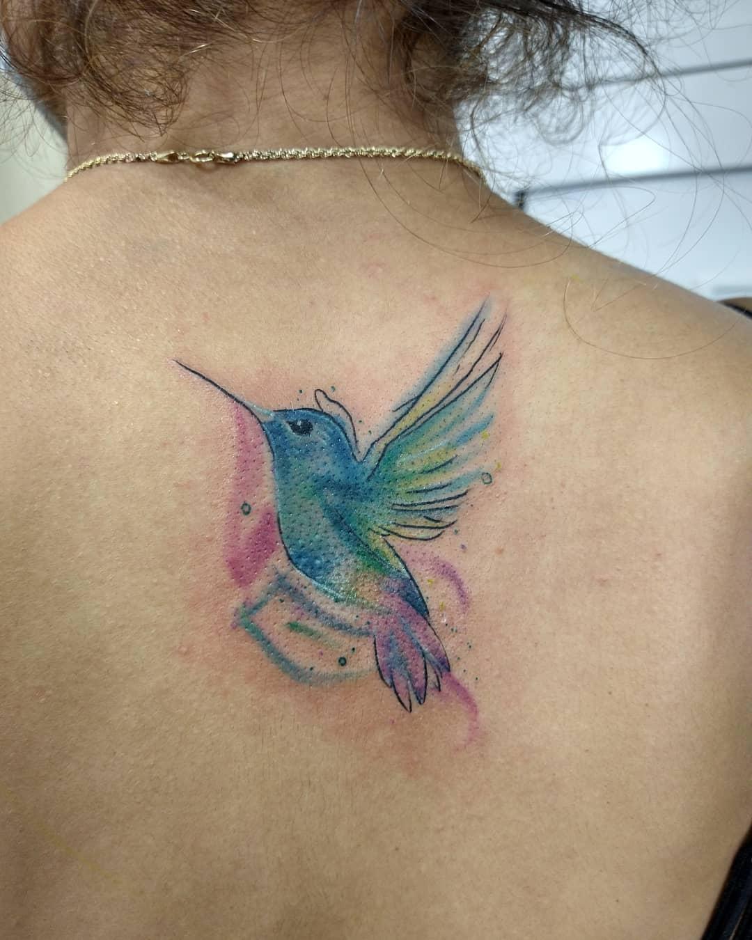 Gorgeous Bird Inspired Splash Of Color Design
